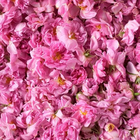 Damaszkuszi rózsavíz, bio