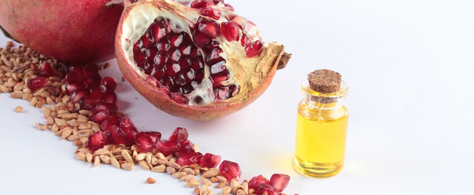 All Organic Treasures olajok és zsírok